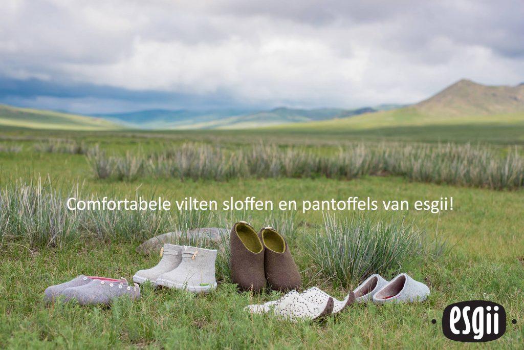 Esgii | Originele vilten sloffen uit Mongolië