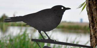 Metalbird