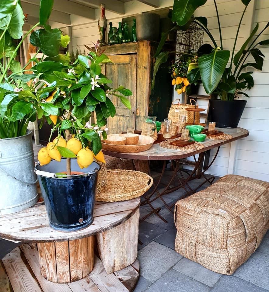 Nieuwe goodies | Yoshiko Home