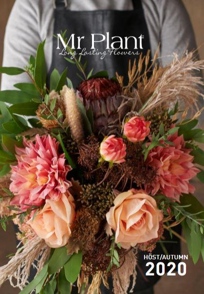 Mr Plant | Catalogus herfst & winter 2020 | DEENS Agency